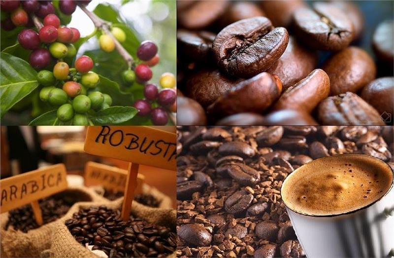 vietnam-coffee-823