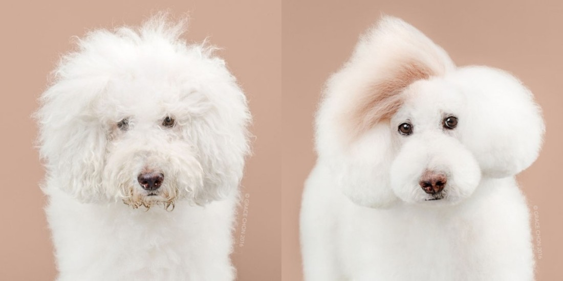 athena-before-and-after-meeting-a-stylist