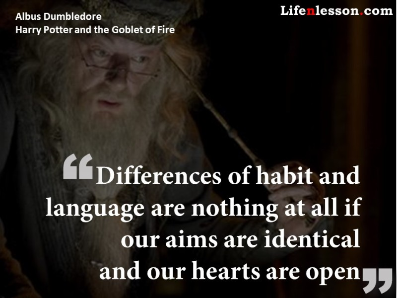 quote by Albus Dumbledore from Harry Potter and the Goblet of Fire