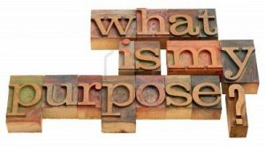 what-is-my-purpose life and lesson
