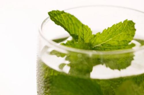 mint-water