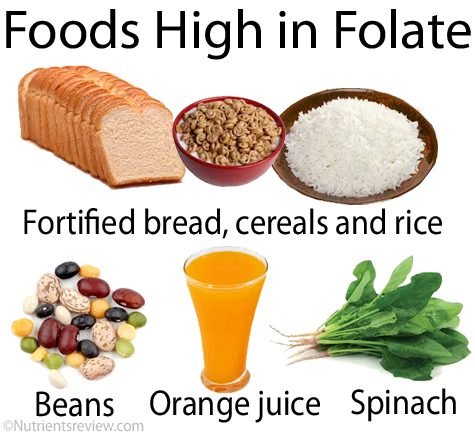 Foods-High-in-Folate