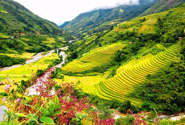 Photo of The Top 9 Reasons to fall in love with Vietnam