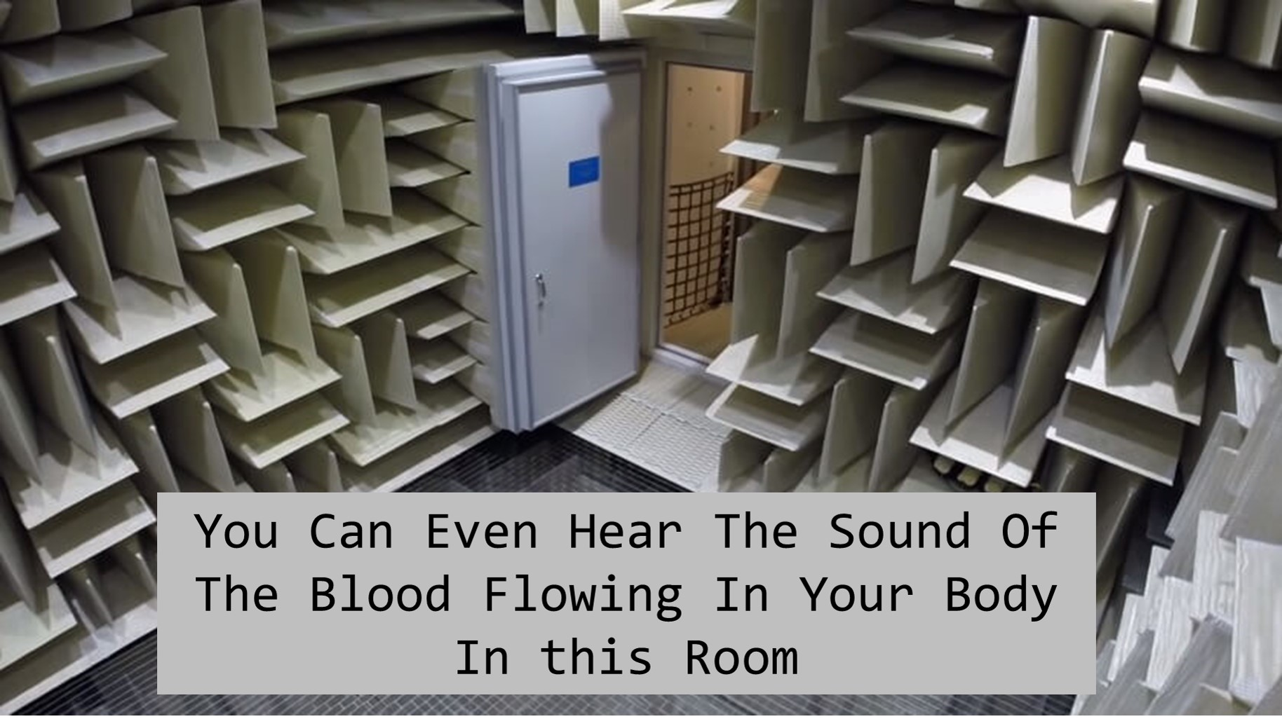 Room Where You Can Hear Your Organs