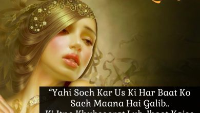 Photo of 20 Mirza Ghalib Shayaris That You'll Love From The Core Of Your Heart !!