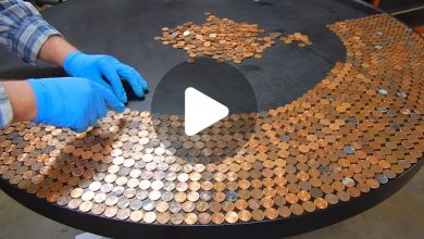 Photo of He Puts Hundreds Of Pennies On A Black Table. The End Result? Absolutely GENIUS!