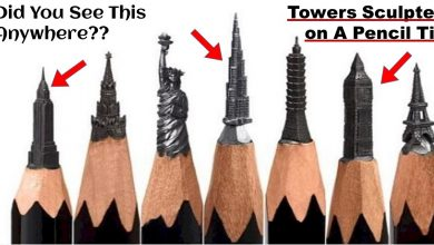 Photo of Can You Carve Statue Of Animals, Buildings etc., On The Pencil Tips? Yes You Heard Right..