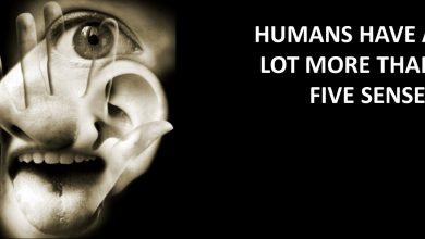 Photo of HUMANS HAVE A LOT MORE THAN FIVE SENSES