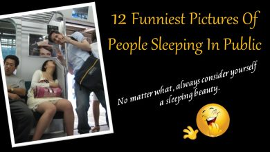 Photo of These 12 Hilarious Pictures of People Showing Us That Sleeping in Public Places Is Not Always A Good Idea