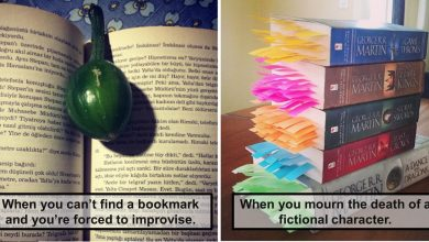 Photo of Only a True Book Lover will Understand these 22 Pictures