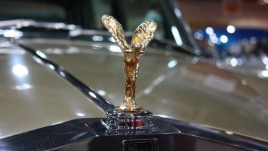 Photo of Here's The Reason Why You Cannot Steal Rolls Royce Hood Ornament
