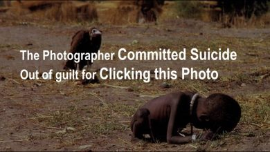 Photo of 10 Most Impressive Photos Justifying A Picture Is Worth A Thousand Words