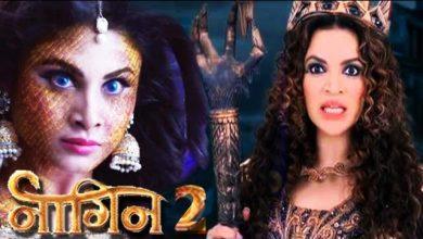 Photo of 'Naagin 2:' Karanvir Bohra of 'Qubol Hai' fame to romance Mouni Roy? Now That's Amazing!!