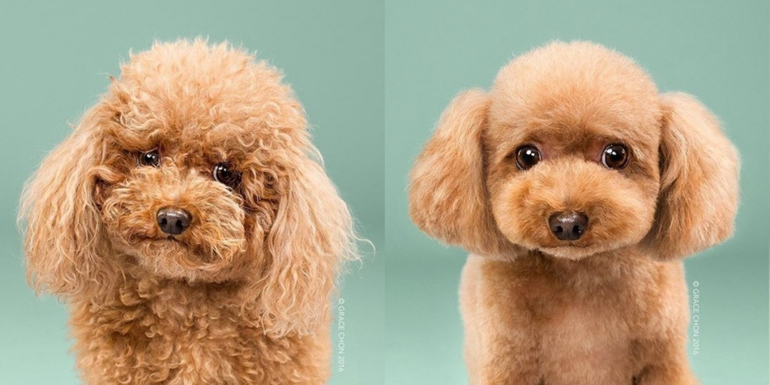 biggie-smalls-before-and-after-meeting-a-stylist