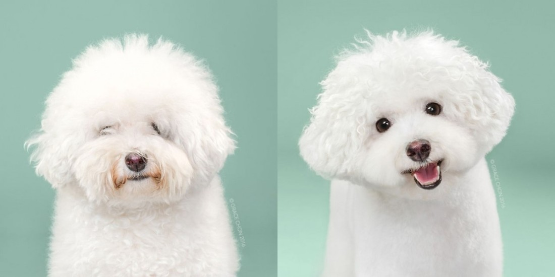herman-before-and-after-meeting-a-stylist