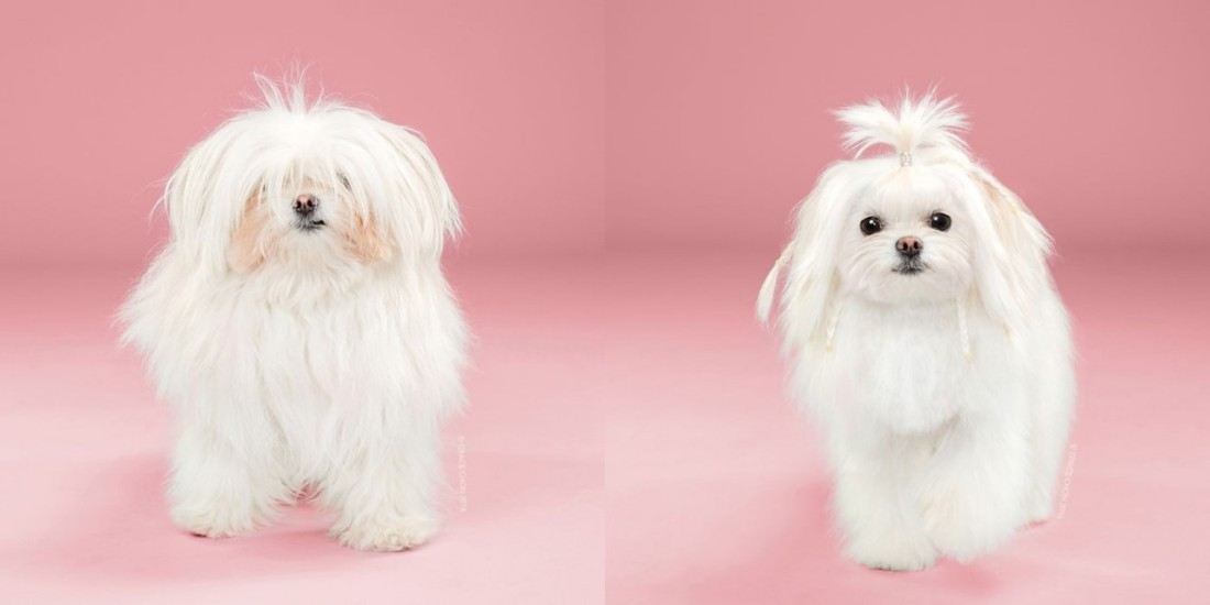 yuki-before-and-after-meeting-a-stylist