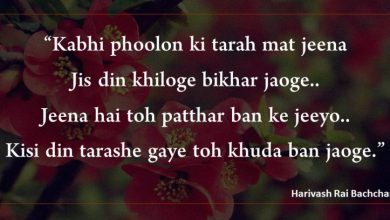 Harivansh Rai Bachchan Quotes and Poem