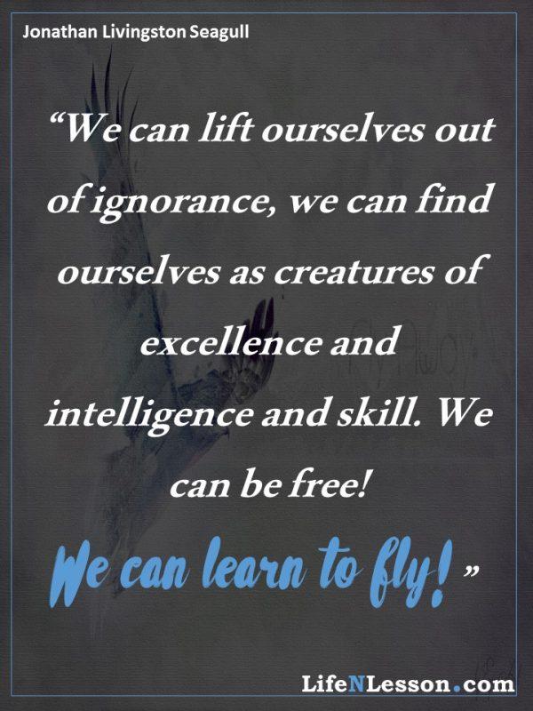 Jonathan Livingston Seagull quotes