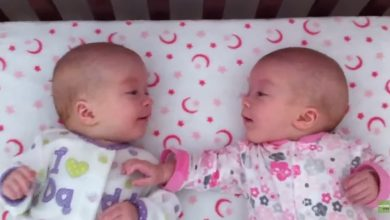 Photo of Identical twin girls see each other for first time, have a priceless conversation