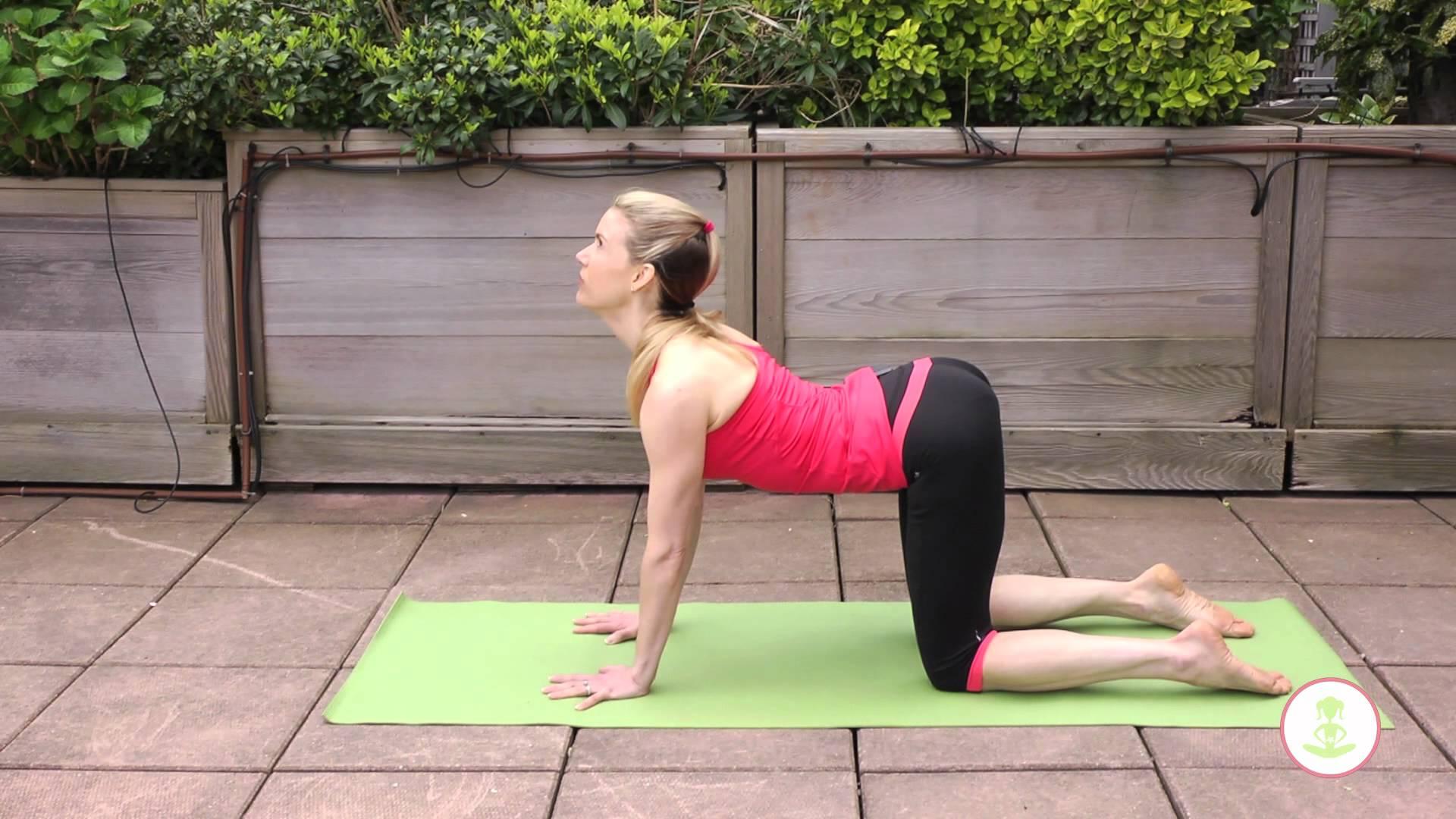 Cat posture exercise