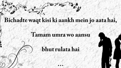 Photo of 17 Most Heartbreaking Breakup Shayari from the Depth of the Heart