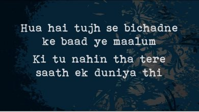 Photo of 14 Heartbreaking Best Ahmad Faraz Shayari to fill your Soul.