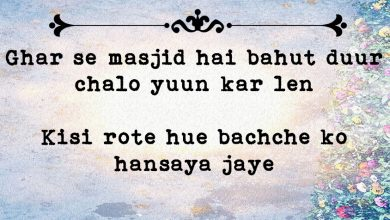 Photo of 23 Outstanding Nida Fazli Shayaris to Give Consolation to your Soul