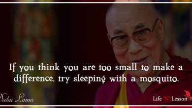 Photo of 16 Best Dalai Lama Quotes on Love, Compassion and Kindness to live by