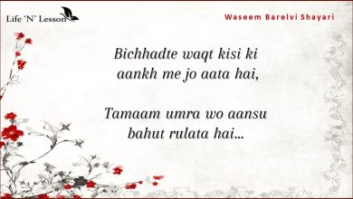 Photo of 17 Heartful Waseem Barelvi Shayaris That Will Speak Straight To Your Soul