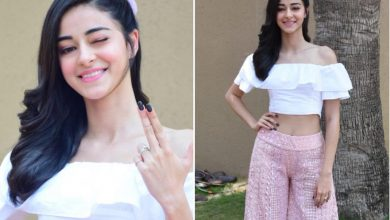 Photo of Ananya Panday's Look Book in Pink Palazzo